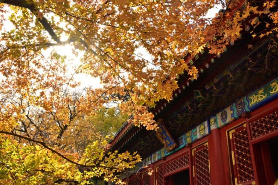 Pechino in autunno